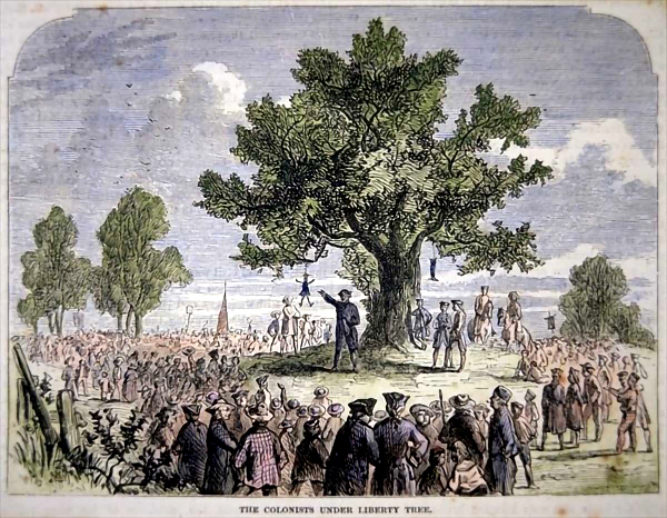 Famous Liberty Tree in Boston with effigy hanging from it