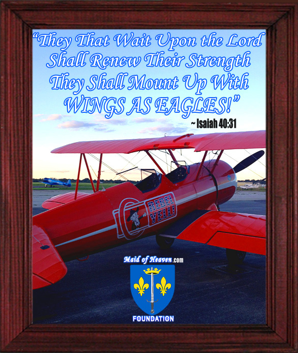 The Rebel Yell! Airplane Framed Picture